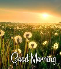 good morning sunrise images hd quality