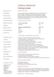 Cv Profile Examples No Experience Free Resume