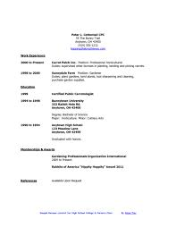 Quick And Easy Resumes Thevillasco Fast Easy Resume Templates 45