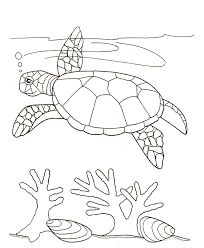 Small Picture Turtle Swim Near Seaweed Coloring Page SkyHawk Swimming