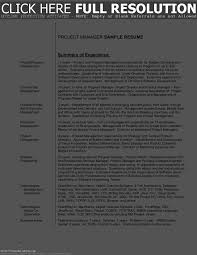 Summaries For Resumes Examples Template Und File Cover Letter
