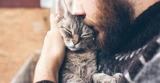 Do <b>Cats</b> Have Feelings? Do <b>Cats</b> Feel <b>Love</b>? | Petfinder