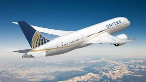 Special united discount and mileageplus miles. How To Book United Airlines Pet Travel Petrelocation