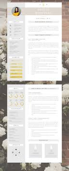 It Modern Resume Resume Template Creative Resume Template Two Page Professional