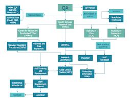 Example 5 Process Flowchart Qa Processes In Hsru This