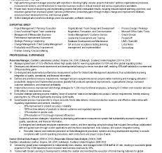 Siebel Architect Resume Informatica Administration Sampleesume S Modern Bricked 16