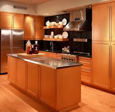 Light Wood Kitchen Light Wood Kitchen Cabinets In Kitchen Contemporary With Kitchen