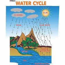 Chart No 183 Water Cycle