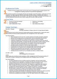 Template Example Of A Good Cv Really Great Resume Examples Executive