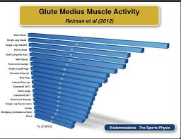 Cool Charts Showing Muscle Activation With Different