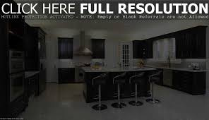 impressive kitchen decorating ideas. Impressive Black Kitchen Cabinets Ideas For Home Decorating Concept I