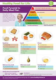 Balanced Diet Chart For Female Healthy Eating Guidelines And Resources Hse Ie