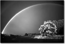 Znalezione obrazy dla zapytania rainbow black and white