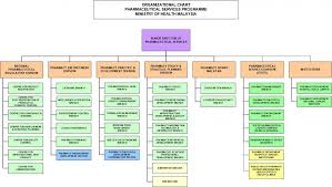 Malaysian Government Structure Chart Organization Chart Pharmaceutical Services Programme