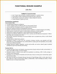 Resume Examples Of Professional Summary New Summary In A Resume