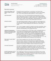 Summary Examples For Resume Interesting Resume Professional Summary Examples Beautiful Od Resume Specialist