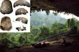 Image result for niah cave