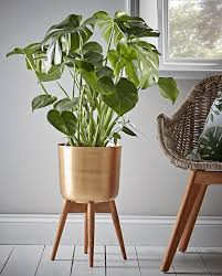 Emejing Plant Pots Indoor Images Interior Design Ideas Inside Containers 4