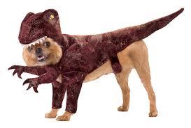 Marvelous Courtesy Of Animal Planet