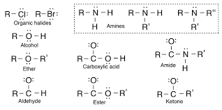 functional groups chart hydrocarbons