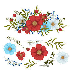 Floral Clipart Red Light Blue White Isolated Flowers And