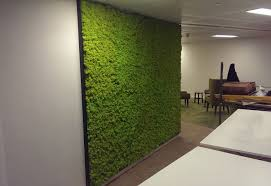 wall office. Fine Office Office Moss Wall Intended S