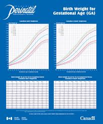 Birth Weight Chart For Gestational Age Pdf Format E