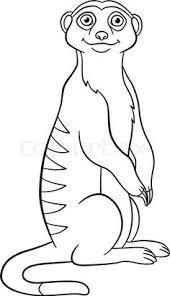 Kleurplaat Stokstaartje Ausmalbild Erdmnnchen Auf Einem Felsen