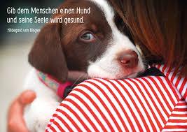 Hunde Sind Gesund Sprüche Zitate Echte Postkarten Online Versenden