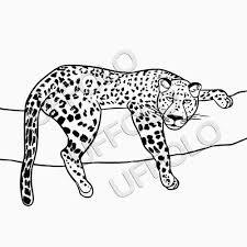 Disegni Per Bambini Facili Bella Immagini Di Animali Da Disegnare