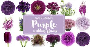 Complete Guide to <b>Purple Wedding Flowers</b>, Purple Flower Names ...
