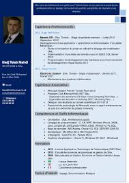 Cv Architecte Informatique