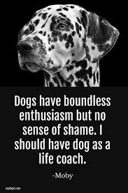 Dog Quotes Dog Love Hundis Dogs Hunde Sprüche Englisch Und