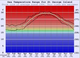 St George Island Water Temperature Sea And Wetsuit Guide