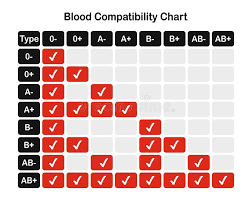 Blood Groups Stock Illustrations 246 Blood Groups Stock