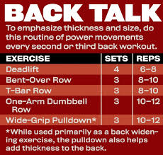 Build Massive Back Muscles With Arnolds Back Workout