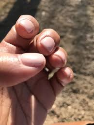 svr nails 440 n front st memphis tn