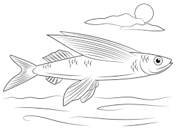 Small Picture Flying Fish coloring page Free Printable Coloring Pages
