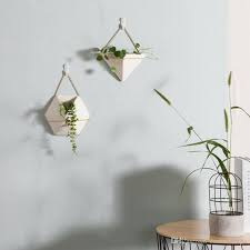2018 ceramic green plant pots indoor wall succulents planters hanging flower pot modern wall planters for home decoration from fashionbape 37 71 dhgate