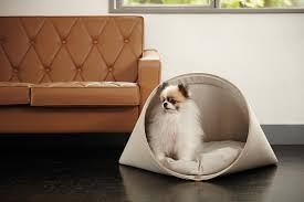 modern dog beds and accessories from howlpot  dog milk