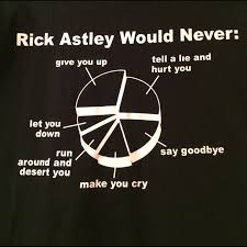 Rick Astley Would Never Pie Chart Rickroll Meme Pie Chart Funny Shirt