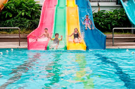 Image result for swimming pool