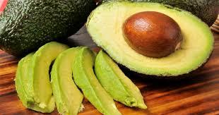 Image result for avocado farms