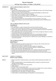 Visual Merchandising Resume Samples Velvet Jobs