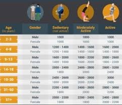 Calories Needed Per Day Calculator By World Health