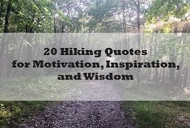Hiking Quotes Fascinating 48 Motivational Hiking Quotes