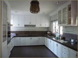 kitchen cabinet spray paintSpray Paint Kitchen Cabinets White  Home Design Ideas