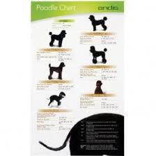 Andis Grooming Chart Pet Grooming Charts Buy Today Groomers Uk