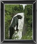 Вышивки крестом с черной пантерой