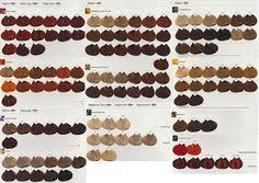 55 Best Hair Color Formulas With Inoa Images Hair Color